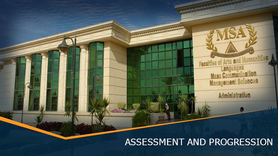 MSA University - Assessment & Progression
