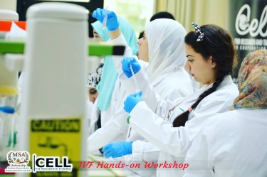 The 2nd Stem Cell Hands-on Workshop
