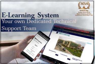 Online Learning systems