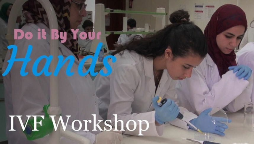 The 3rd IVF Hands-on Workshop
